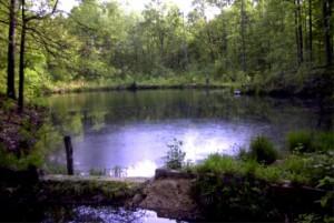 Campground-apond