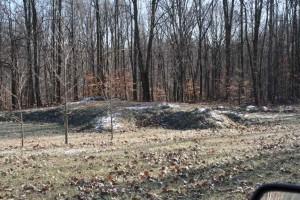 Sacred Sites- turtle-mound
